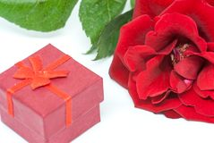 Red rose and small wedding engagement ring box proposal concept. On white Royalty Free Stock Photo