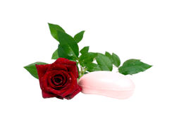 Red rose with soap Stock Photography