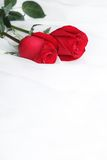 Red rose on soft fabric Stock Photo