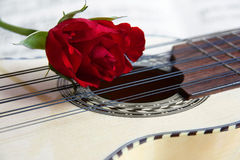Red rose on a South American Charango Stock Photo