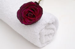Red Rose Spa. Bathroom luxury with red rose and crisp white bathroom towel for a soothing romantic pa break away or bath treatment Royalty Free Stock Photo