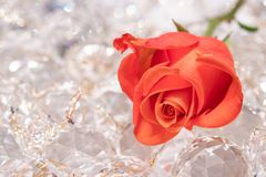 Red rose on sparkling cyrstals royalty free stock photography