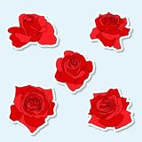 Red Rose Stickers Stock Image