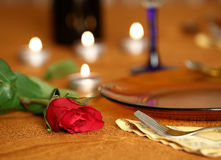 Red rose on the table Stock Photography