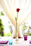 Red rose on table in a restaurant Royalty Free Stock Photography