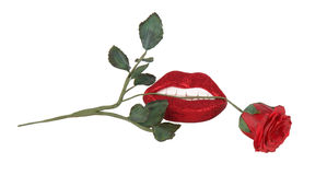 Red rose between teeth and lips Royalty Free Stock Images