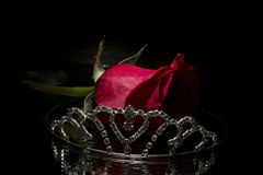 Red rose and tiara Stock Photography