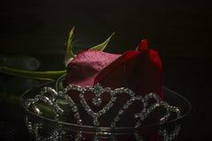 Red  rose and tiara Stock Photo