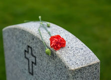 Red Rose on tombstone. American flag and Red Rose on a veterans tombstone at an American National Cemetery Royalty Free Stock Photography