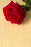 Red rose at top on wood Royalty Free Stock Images