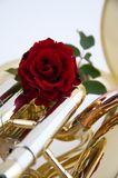 Red Rose on Tuba or Euphonium. A red rose on a gold or brass tuba or euphonium in the vertical format Royalty Free Stock Photography