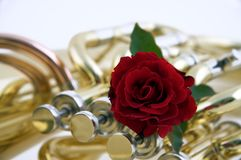 Red Rose on Tuba or Euphonium Stock Photo