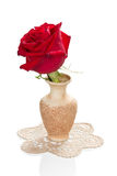 Red rose in a vase Royalty Free Stock Images
