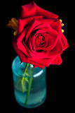 Red Rose in a Vase Royalty Free Stock Photography