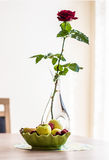 Red rose in a vase and plate with a berries and fruits Royalty Free Stock Photos