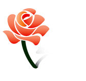 Red rose-vector royalty free stock image