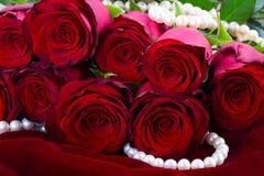 Red rose on velvet Stock Photo