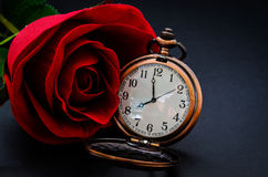 Red rose and vintage pocket wath. Royalty Free Stock Image