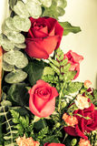 Red rose with vintage style Royalty Free Stock Photography