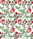 Red rose, watercolor, pattern seamless Stock Image