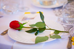 Red Rose on Wedding Dinner Plate Royalty Free Stock Image