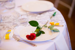 Red Rose on Wedding Dinner Plate Royalty Free Stock Photography
