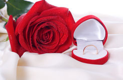 Red Rose and a wedding ring Royalty Free Stock Photos