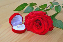 Red rose with wedding ring Stock Photos