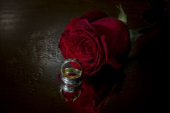 Red rose and wedding rings. Isolated on black  background Stock Photo