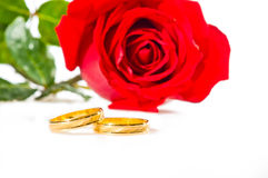 Red rose and wedding rings over white Stock Photography