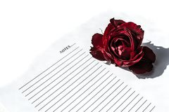 Red rose on white background. Notepad and pen Royalty Free Stock Photos