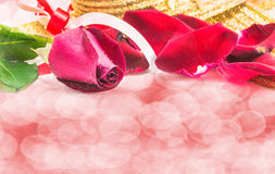 Red rose on white background, Valentines Day background Stock Photography