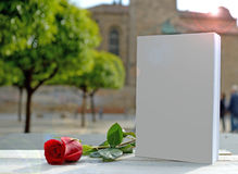 Red rose, white book. Stock Photo