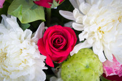 Red rose and white Chrysanthemum Stock Image