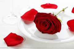 Red rose in white plate. On wooden table Royalty Free Stock Photos