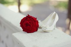 Red rose and white shoes Royalty Free Stock Photography