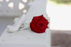Red rose and white shoes Royalty Free Stock Photos