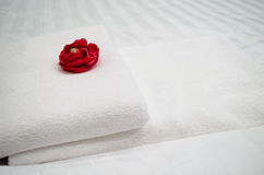 Red rose on white towel. In hotel room Royalty Free Stock Photo