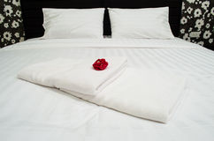 Red rose on white towel Stock Photos
