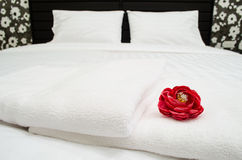 Red rose on white towel Royalty Free Stock Images