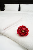 Red rose on white towel Stock Photography