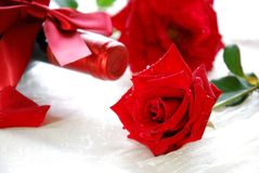Red rose and wine Royalty Free Stock Images
