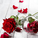 Red rose and wineglass Stock Image