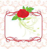 Red Rose With Decorative Frame And Ornament Royalty Free Stock Photos