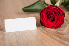 Red rose on wood Stock Images
