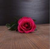 Rose on wood background Royalty Free Stock Photo