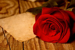 Red rose on wooden background Stock Photography