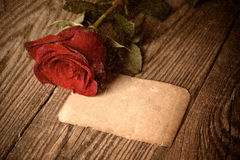 Red rose on wooden background Royalty Free Stock Photo