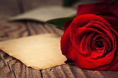 Red rose on wooden background Stock Photos