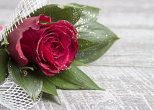 Red rose on the wooden table Stock Image